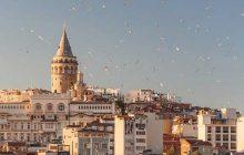 یادگیری زبان ترکی استانبولی سخت است؟ کدام موارد دشوارترند؟