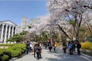 چگونه بورس تحصیلی کره جنوبی بگیریم؟ (آپدیت 2022)
